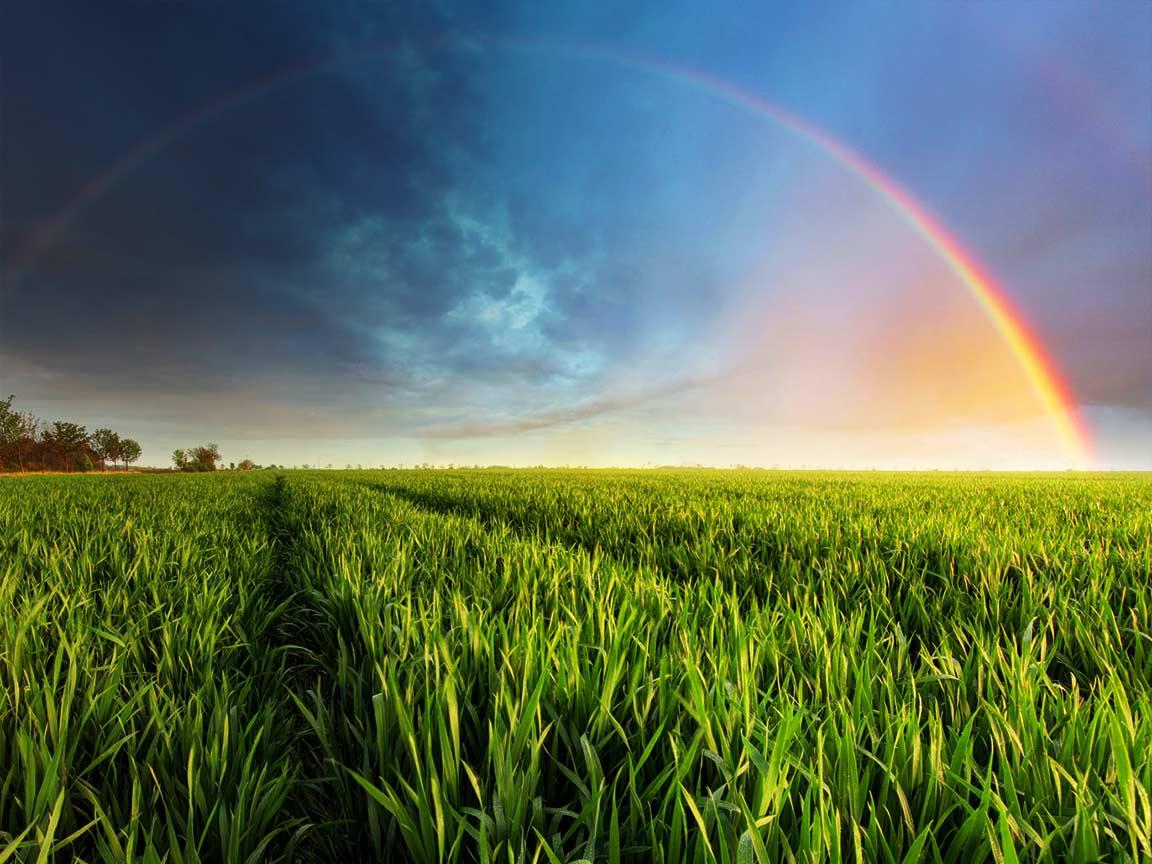 Der Geburtsworkshop – ein möglicher Weg zum eigenen Regenbogen
